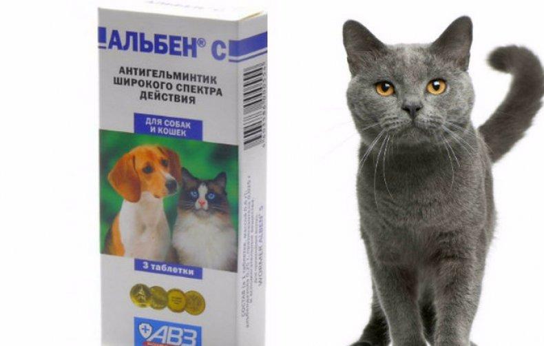 Альбен: инструкция по применению в ветеринарии