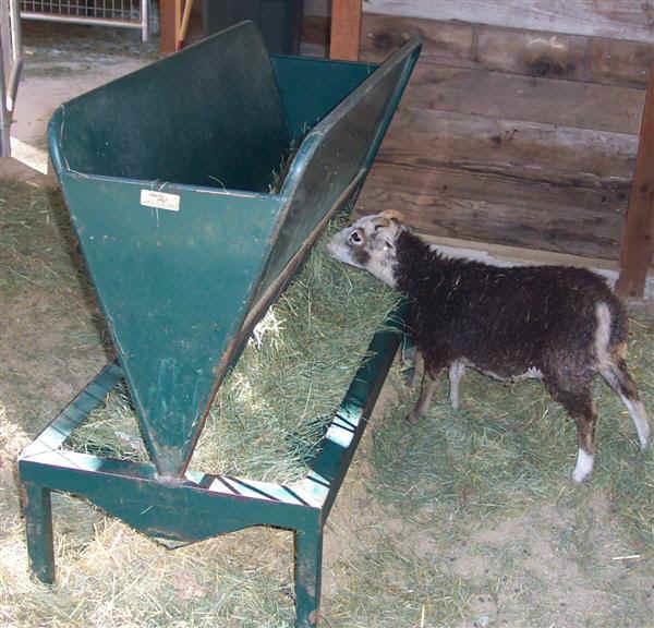 поилки для коз