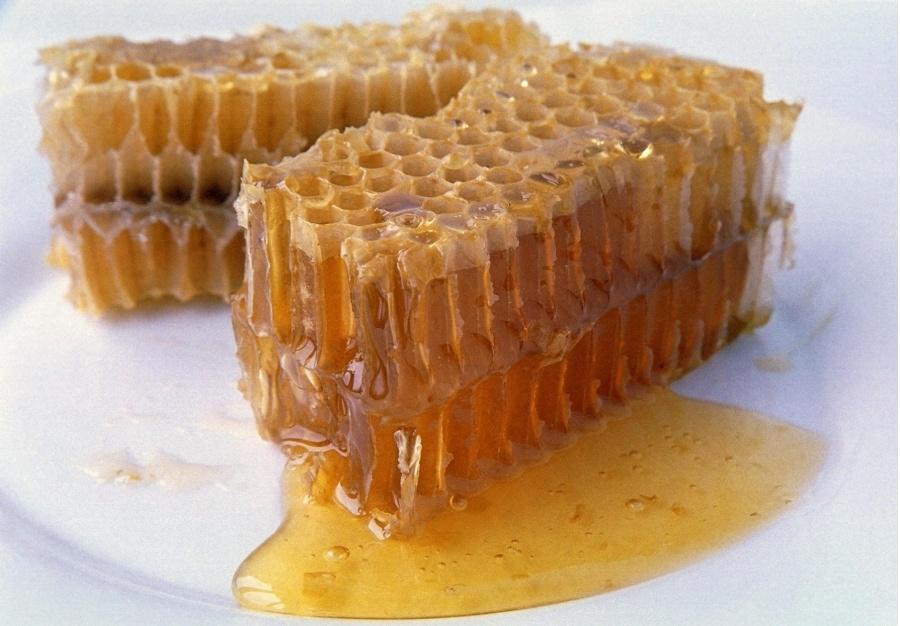 пчелиные соты полезные свойства