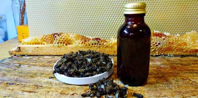 Мертвые пчелы применение