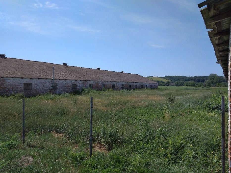 Продается животноводческая ферма 2 га в Полтавской области ...
