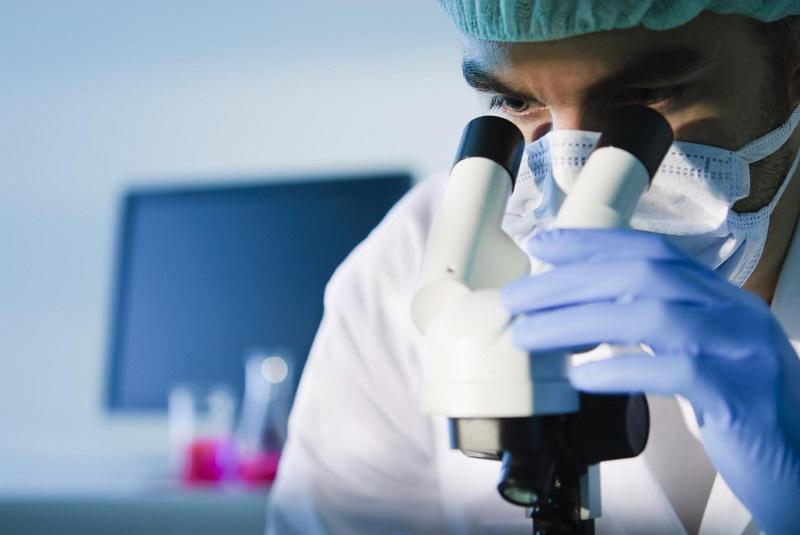 Ящур у человека: Симптомы и методы профилактики
