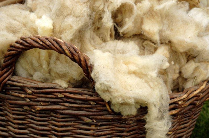 первичная обработка шерсти