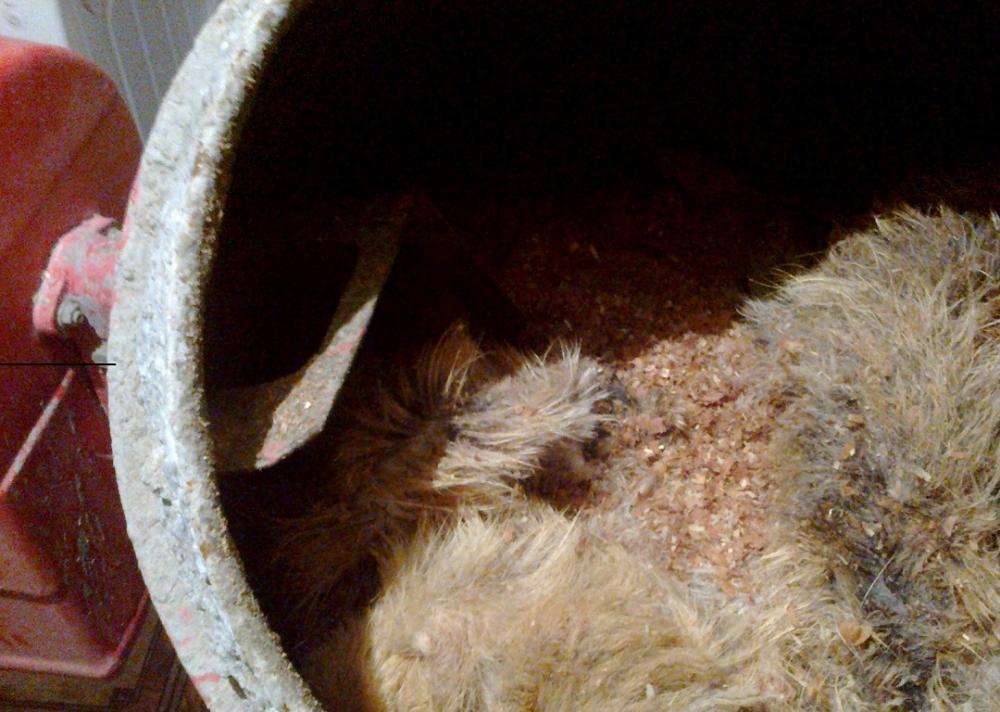 выделка кроличьих шкурок в домашних условиях