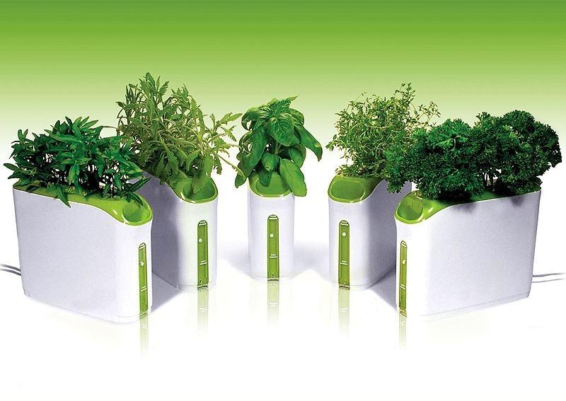 оборудование для гидропоники зелень