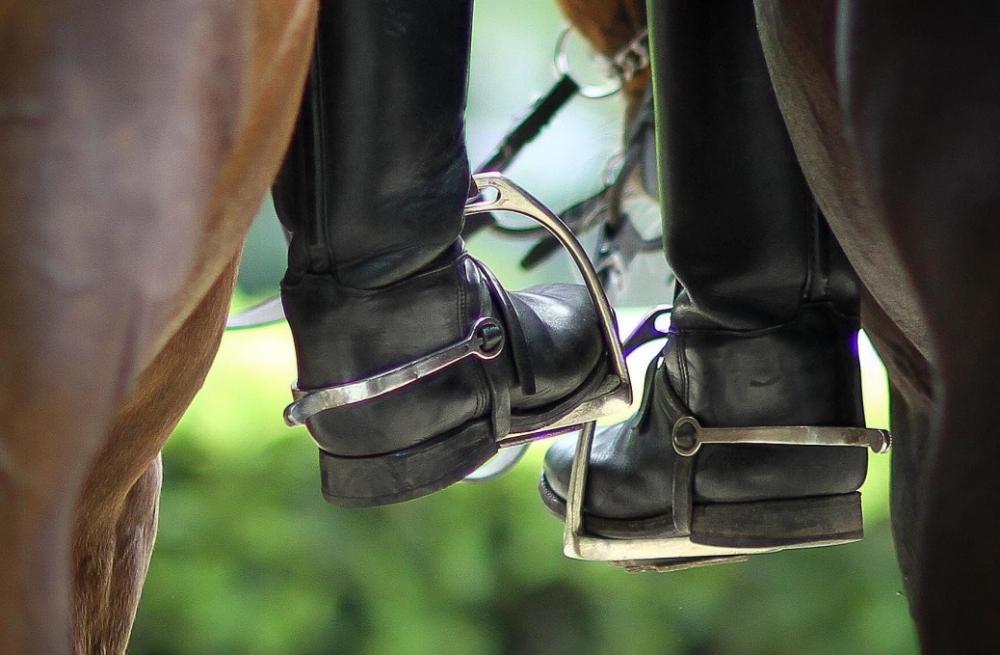 УЛУЧШЕНИЕ КОНКУРНОЙ ПОСАДКИ: ШЕНКЕЛЬ. | ESU Horses