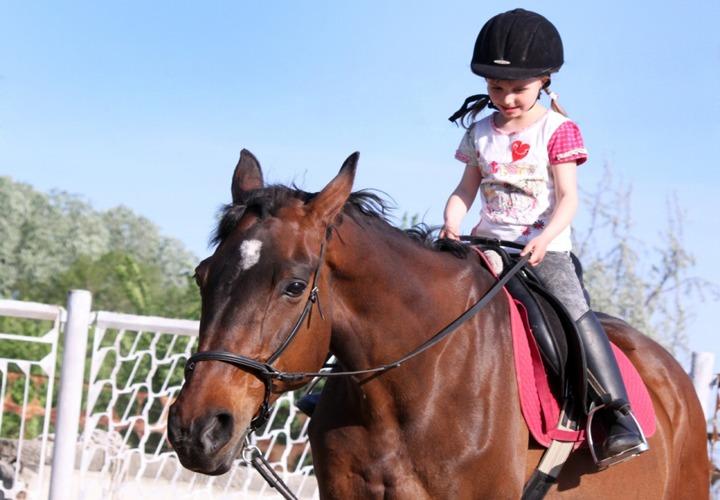 Верховая езда – здоровая страсть