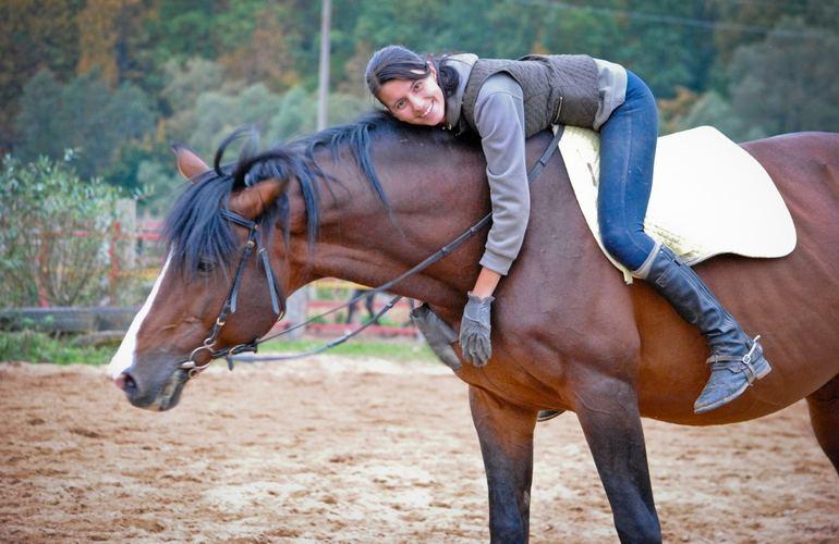Верховая езда как лекарство: в Житомире семьи участников АТО пройдут ...