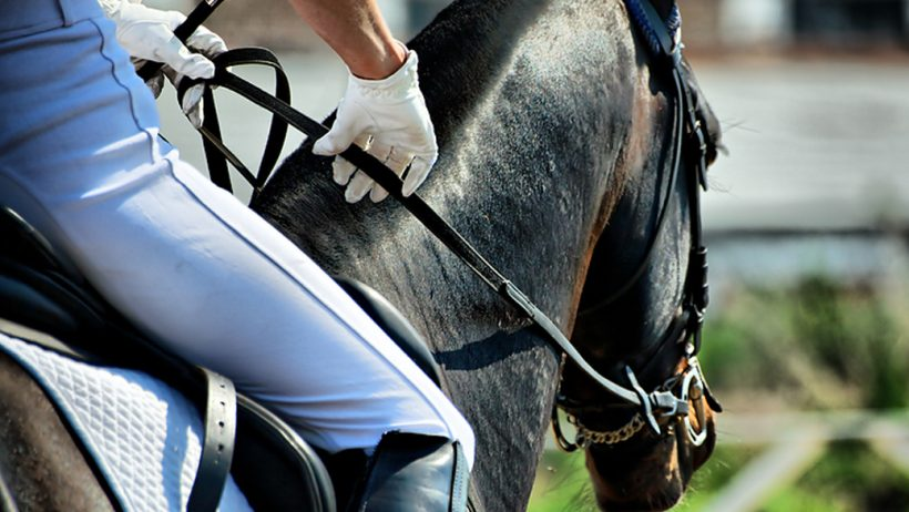 верховая езда – Победный Аллюр