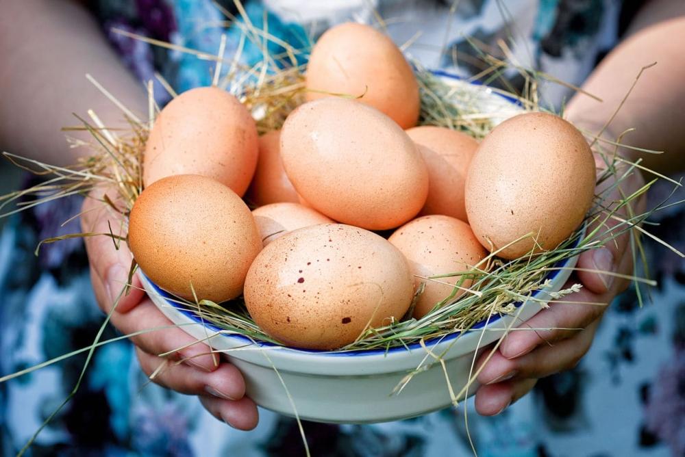 отличить тухлое яйцо от свежего