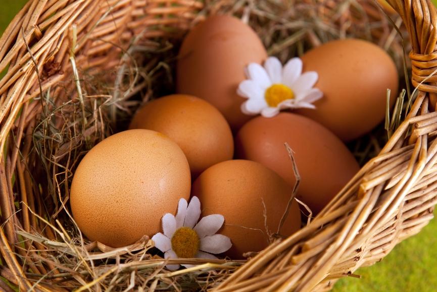 проверить свежесть яиц в воде