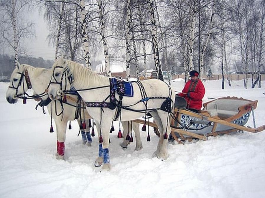 сани конные