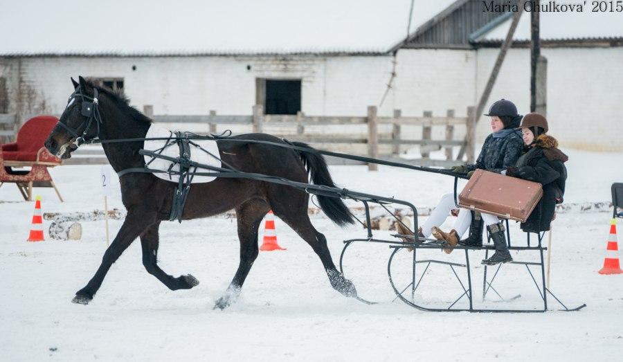 как сделать сани для лошади своими руками