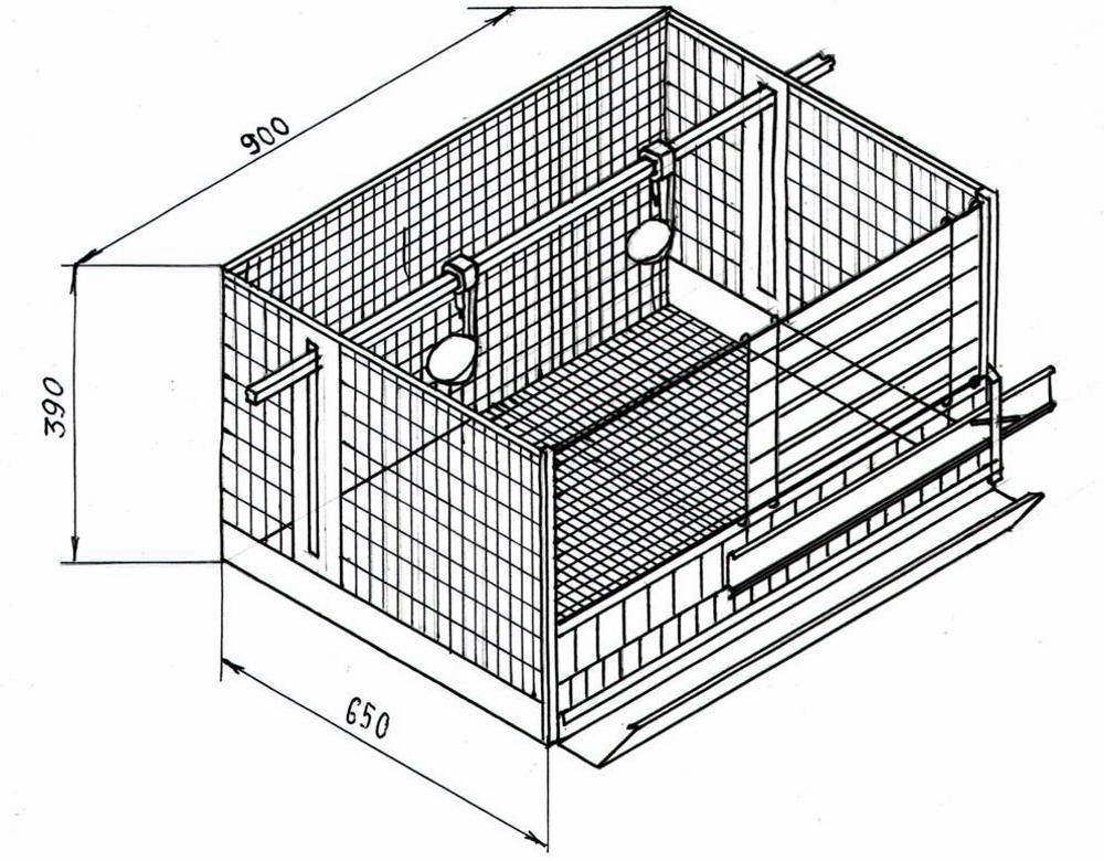 Клетки для кур несушек: как сделать своими руками, чертежи, размеры ...