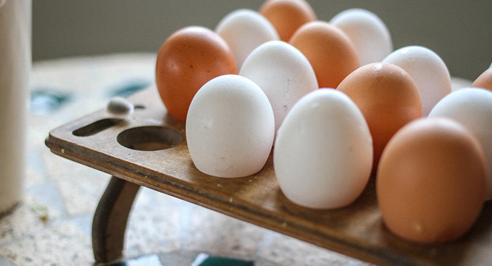 Ученые ответили на вопрос: курица или яйцо