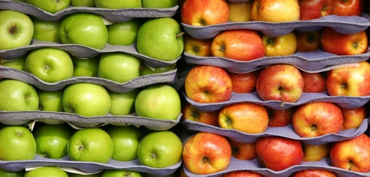 сохранить яблоки на зиму свежими