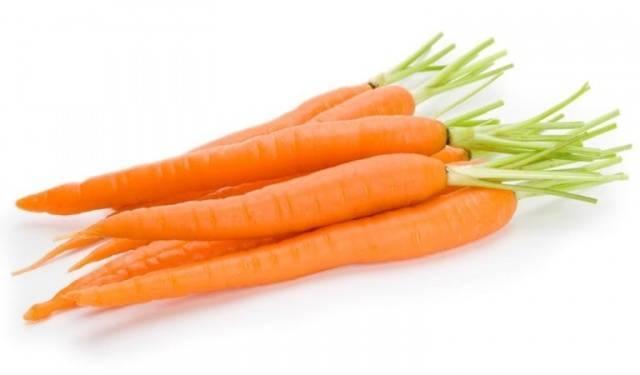 какую морковь лучше посадить вкусную и большую